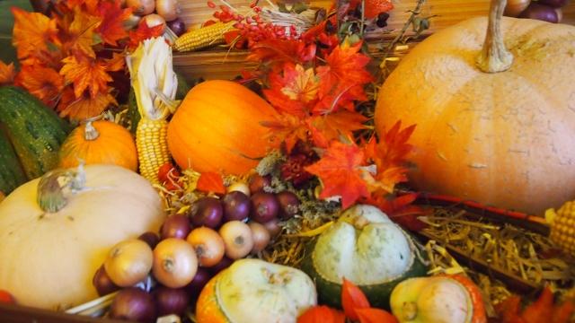 食欲の秋!秋になると食欲が増すのはなぜでしょう?