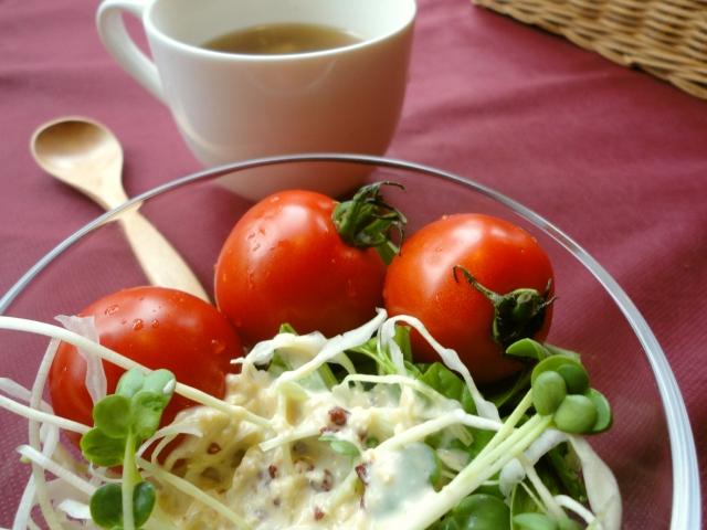 みなさんは、毎日どのくらいの野菜を食べていますか?