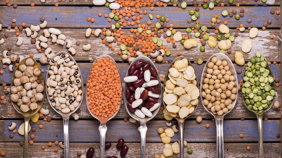 カネハツユーザーに聞いてみた!「豆や根菜」に対して持っているイメージは?